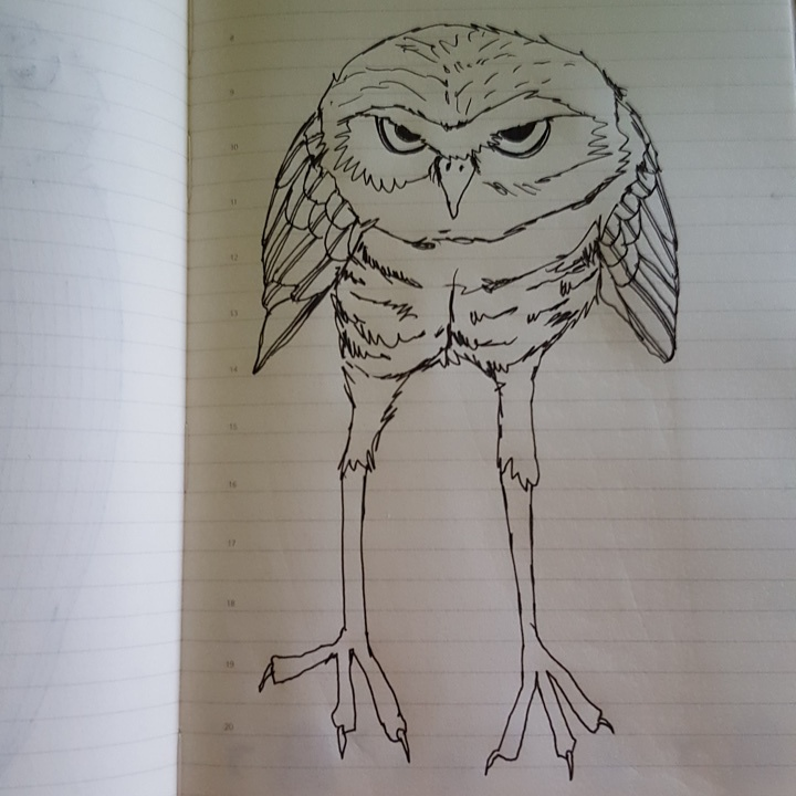 outline of a crouching burrowing owl